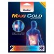 Soğuk Terapi Flaster